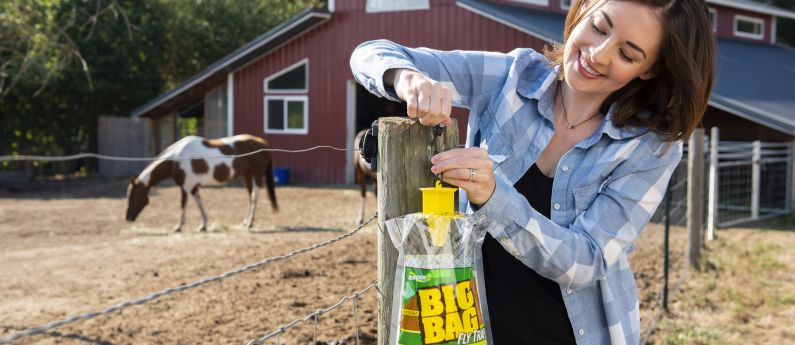 How to use the RESCUE!® Big Bag Fly Trap