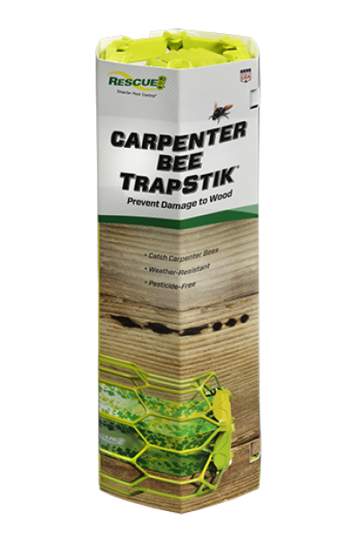 Carpenter Bee TrapStik