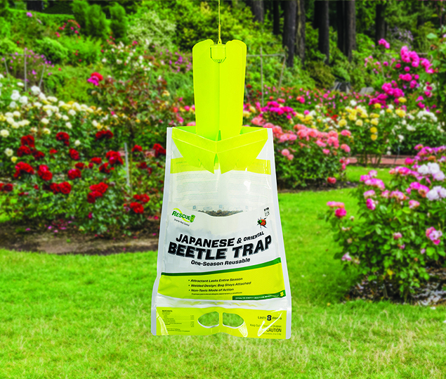 RESCUE! Japanese Beetle Trap